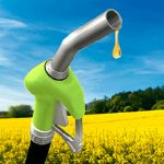 Fallo a favor de la Argentina por biodiesel